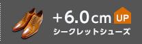 シークレットシューズ +6cmUP