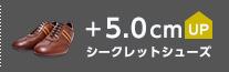 シークレットシューズ +5cmUP